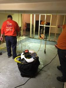 Commercial Restoration Technicians